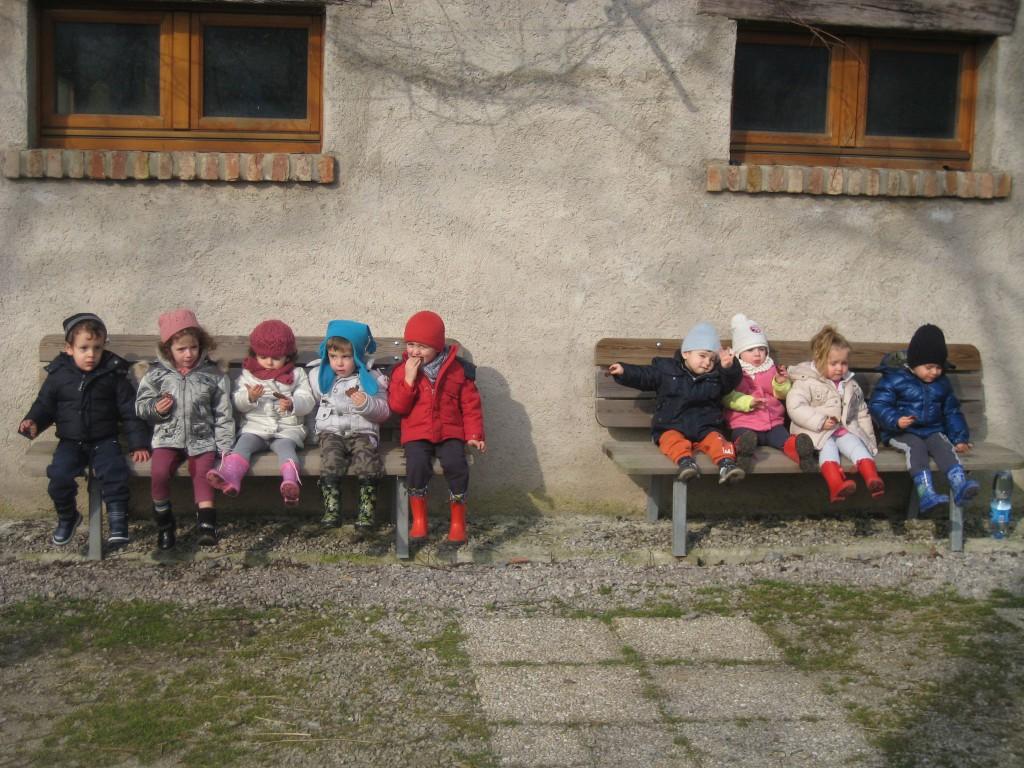 Bambini in fattoria per conoscere la lana e il suo for Grandi planimetrie della fattoria