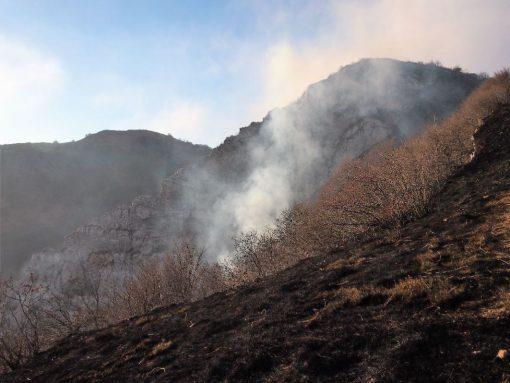 incendio-monte-rai-malascarpa-10