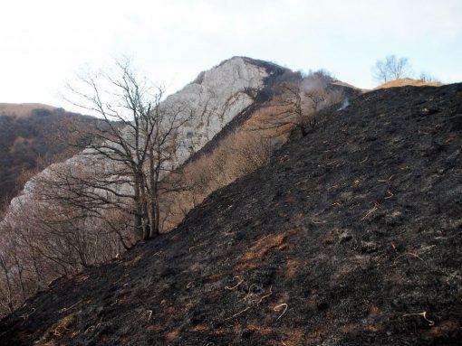 incendio-monte-rai-malascarpa-26
