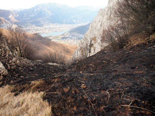 incendio-monte-rai-malascarpa-29