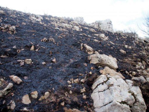 incendio-monte-rai-malascarpa-32