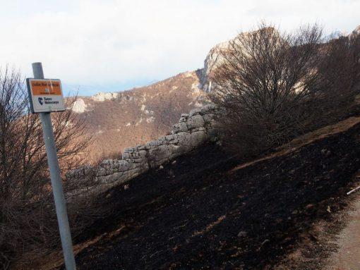 incendio-monte-rai-malascarpa-35