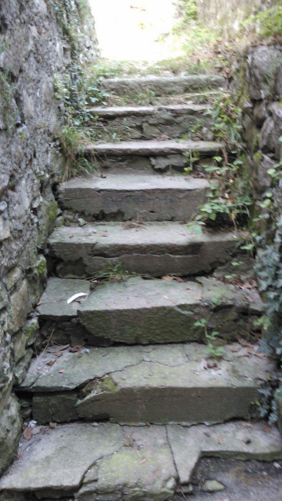 Proserpio i volontari hanno ripristinato la scalinata di fontana alta erbanotizie - Nava piastrelle canzo ...