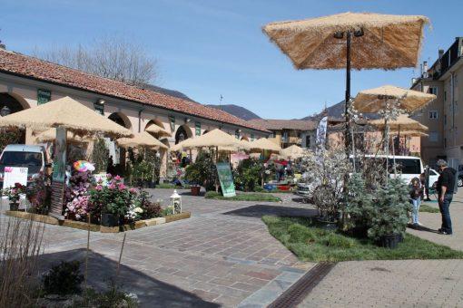 Piazza mercato si trasforma in un giardino il sole premia primavera erba erbanotizie - Mobilificio il sole ...